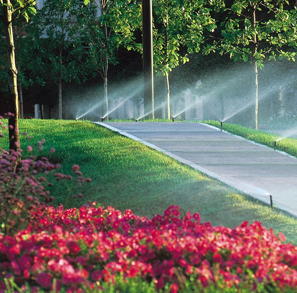 Lawn Service And Landscape: Turf And Irrigation Murfreesboro